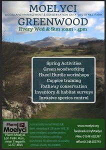 spring_woodland_web_eng (2)
